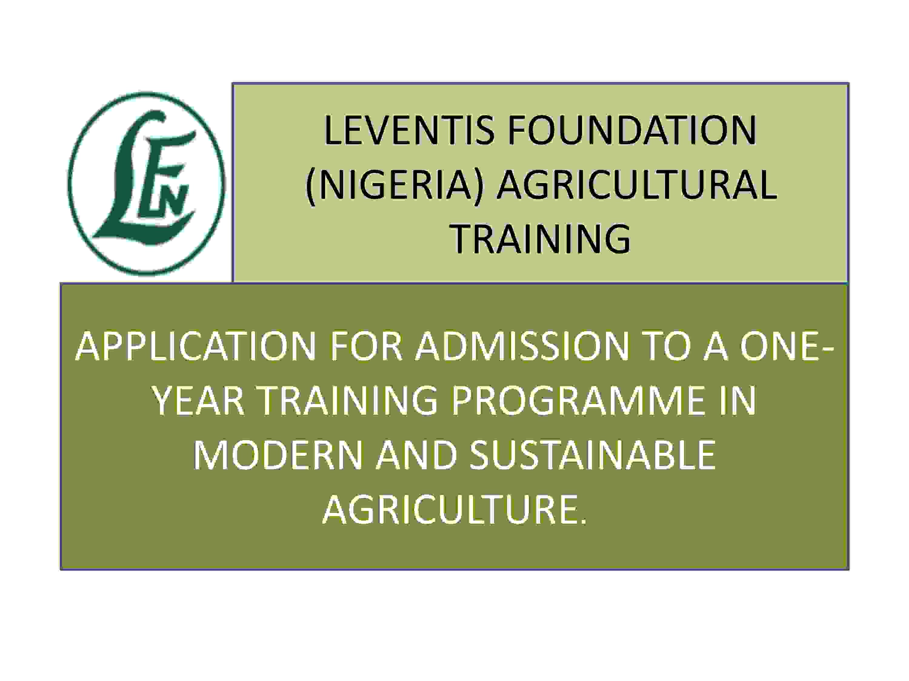 Leventis Foundation One-year Youth Training Programme in Modern and